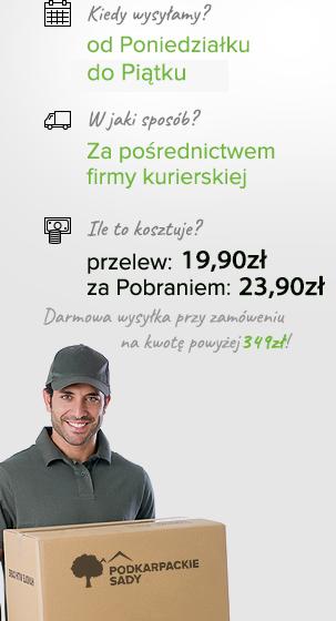 http://podkarpackiesady.pl/skins/user/rwd_shoper_1/images/user/wysylka.png